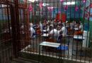 122 presos do Paraná vão cursar universidade