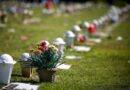 Covid-19: Brasil tem 19,6 milhões de casos e 549,4 mil mortes